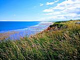 Crimdon Dene, Hartlepool, County Durham
