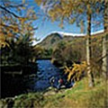 UK Private Static Caravan Hire at Boat of Garten, Aviemore, Inverness-shire, Scotland